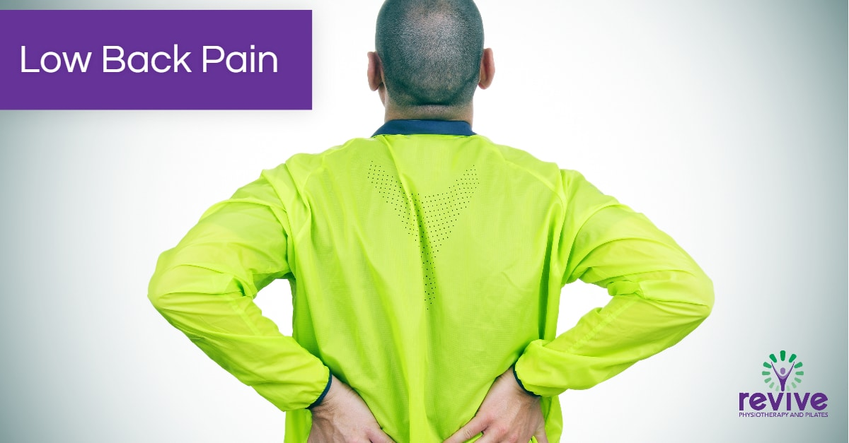 Low back pain - Revive Physiotherapy and Pilates