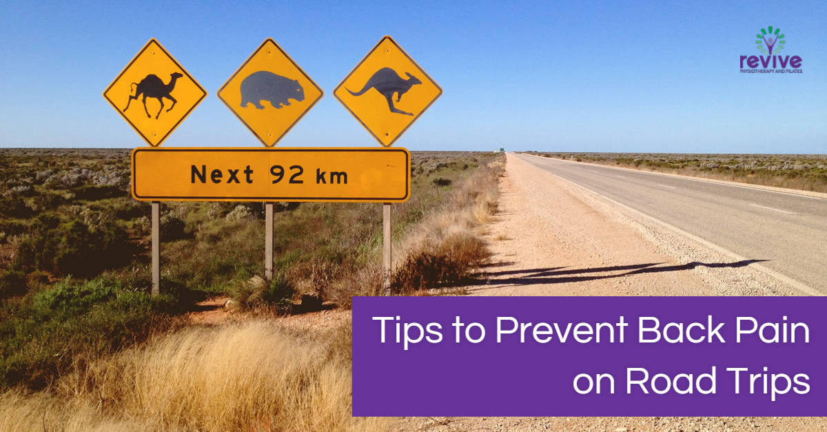 Tips to prevent back pain on road trips - Revive Physiotherapy and Pilates