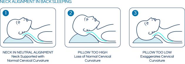 Sleeping posture - Sleeping on your Back